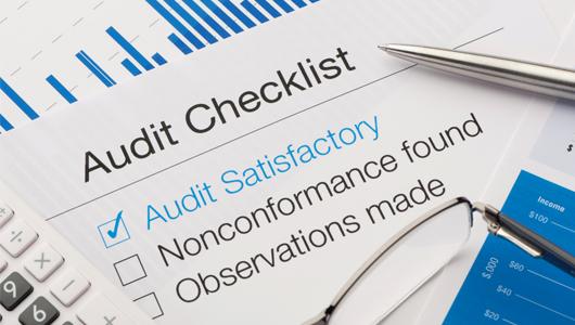 statutory-audit